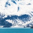 Glacier bay nationalpark, alaska — Stockfoto #58517015