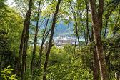 Skagway, alaska — Stok fotoğraf