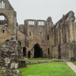 Ruins of Tintern Abbey, a former cistercian church from the 12th — Stock Photo #53832529