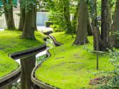 Pequeño canal sinuoso en el Parque — Foto de Stock
