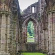 Ruins of Tintern Abbey, a former church in Wales — Stock Photo #63597681