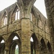 Ruins of Tintern Abbey, a former church in Wales — Stock Photo #63597789
