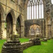 Ruins of Tintern Abbey, a former church in Wales — Stock Photo #63597851