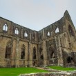 Ruins of Tintern Abbey, a former church in Wales — Stock Photo #63597883