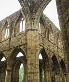 Ruins of Tintern Abbey, a former church in Wales — Stock Photo
