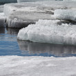 Ice floes in the water — Stock Photo #58949145