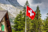 Swiss flag - national symbol of Switzerland with Alps in backgro — Stock Photo