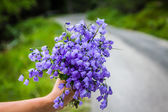 Bouquet of violets   wildflowers — Stock Photo