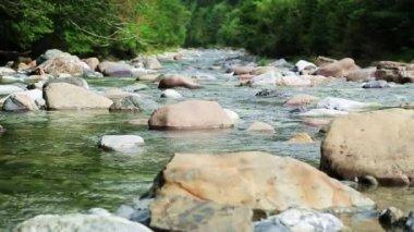 Rio Ara river Bujaruelo in Valle de Ordesa valley Pyrenees Huesca Aragon at Spain — Stock Video