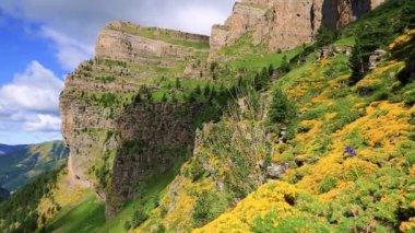 Ordesa y Monte Perdido National Park,Faja de las flores — Stock Video