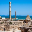 Ancient ruins at Carthage, Tunisia with the Mediterranean Sea in — Stock Photo #55627437