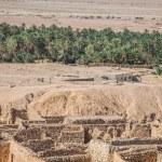 Mountain oasis Chebika at border of Sahara, Tunisia, Africa — Stock Photo #56502417