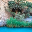 Постер, плакат: Little pond in Chebika oasis at border of Sahara Tunisia Afric