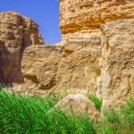 Famous Mountain oasis Chebika in Tunisia, Northern Africa — Stock Photo #56505225