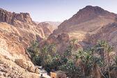 Chebika oasi di montagna al confine del sahara, tunisia, africa — Foto Stock