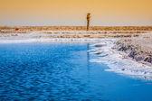 Chott el Djerid, salt lake in Tunisia — Stock Photo