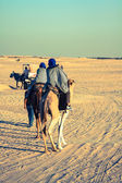 Beduins leading tourists on camels at short tourist tour around — Stock Photo