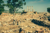 Thuburbo majus, Tunisia a few of the remaining pillars which onc — Stock Photo