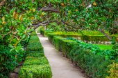The Royal Palace gardens, Aranjuez,Community of Madrid,Spain,Eur — Stock Photo