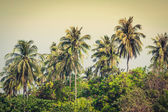 Travel vacation background - Tropical island with resorts - Phi- — Stock Photo