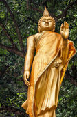 Statue of the buddha in Krabi,Thailand — Foto de Stock