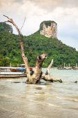 Traditional Thai boat on Railay beach — Stock Photo