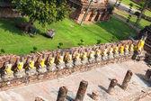 Buddha Statues Ayutthaya Thailand — Stock Photo