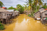 Typical House on the Tonle sap lake,Cambodia. — Stock Photo