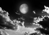 The moon in the night sky — Stock Photo
