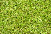 Artificial turf — Stock Photo
