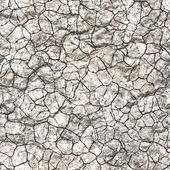 Cracked earth — Stock Photo