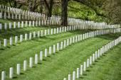 Arlington cemetery graveyard — ストック写真