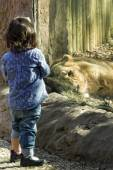 Children at the zoo — Stock Photo