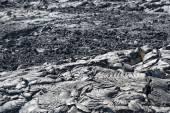 Big island lava fields — Stock Photo
