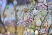 Easter egg tree — Stock Photo