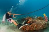 Diver holding boat anchor from underwater — Stock Photo