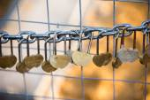 Love padlocks hanging from a chain — Stock Photo