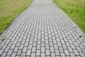 Stone block walk path with green grass — Stock Photo