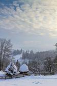 Zimní pohádka — Stock fotografie