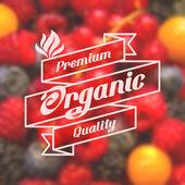 Organic food — Stock Vector