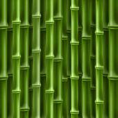 Bambù — Vettoriale Stock