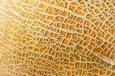 Textured melon peel full frame close up — Stock Photo