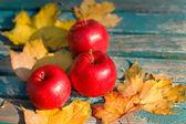 Outono maçãs vermelhas e folhas amarelas — Fotografia Stock