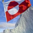 Flag of Greenland — Stock Photo #57891367