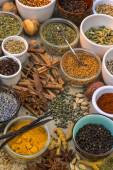 Spices and Dried Herbs — Stock Photo
