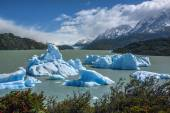 Icebergs in Grey Lake - Patigonia - Chile — Stock Photo