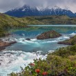 Torres del Paine - Patagonia - Chile — Stock Photo #69732179