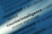 Counterintelligence - Dictonary Definition — Stock Photo