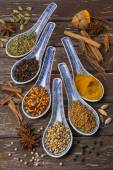 Oriental Spices - Cooking Ingredients — Stock Photo