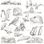 Polar Regions: Travel around the World. Freehand drawings. — Stock Photo #58619595